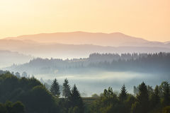 Foggy morning in mountains Royalty Free Stock Images