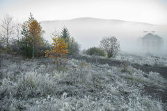 Foggy morning in the mountains Royalty Free Stock Images