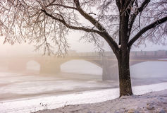 Foggy morning near the bridge through the frozen river. Tree in hoarfrost on the snowy embankment. gorgeous cityscape sunrise Royalty Free Stock Photo
