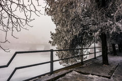 Foggy morning near the bridge through the frozen river. Tree in hoarfrost on the snowy empty embankment. gorgeous cityscape sunrise Royalty Free Stock Photos