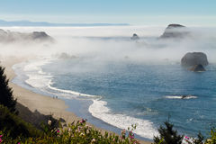 Foggy morning, Oregon coast Royalty Free Stock Images