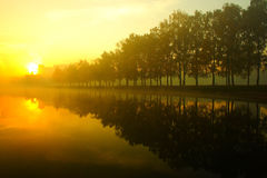 Foggy morning over the lake, fall trees reflected in water Stock Image