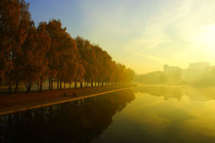 Foggy morning over the lake, fall trees reflected in water Royalty Free Stock Images