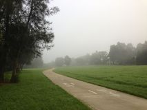 Foggy Morning in a park Stock Images