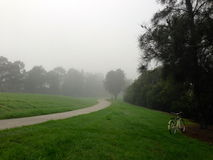 Foggy Morning in a park Stock Photo