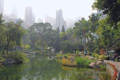 Foggy morning in the park, Hong Kong, Asia Stock Photo