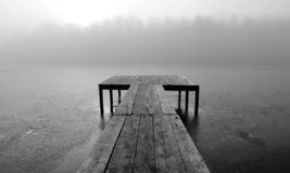 Foggy morning on the pond Royalty Free Stock Photography