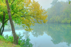 Foggy Morning Reflections Royalty Free Stock Photography