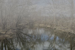 Foggy Morning. On the river Royalty Free Stock Photos
