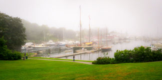 Foggy Morning Rockland Maine Harbor Stock Photography