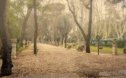 Foggy morning in Roman park. Quiet morning in Villa Borghese park, Roma, Italy Royalty Free Stock Photo