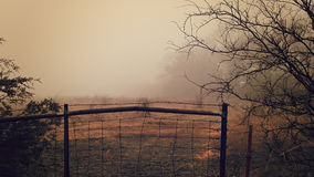 Foggy Morning in Rural America Stock Images