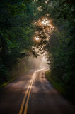 Foggy morning on a rural road Royalty Free Stock Image