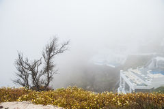 Foggy morning on Santorini island Royalty Free Stock Images