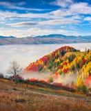 Foggy morning scene in the mountain village Babyn Royalty Free Stock Photos