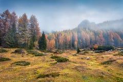 Foggy morning scene in National Park Tre Cime di Lavaredo. Royalty Free Stock Photo