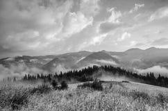 Foggy morning landscape royalty free stock photography