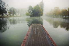 Foggy morning. At a small lake in a park stock photo