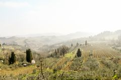 Foggy morning in the spring, Tuscany, Italy stock photography