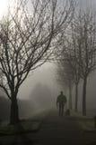 Foggy Morning Stroll. Man and dog on a morning stroll through the lifting fog royalty free stock photos