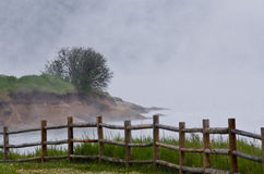 Foggy Morning on the Summer Lake Royalty Free Stock Photography