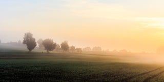 Foggy Morning Sunrise in Bavaria Royalty Free Stock Photos