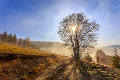 Foggy morning in Transylvania Royalty Free Stock Images