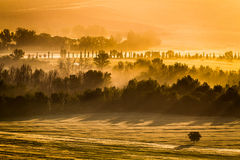 Foggy morning in the valley, Tuscany Royalty Free Stock Photography