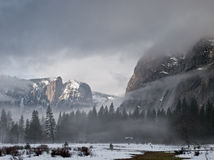 Foggy morning in yosemite Royalty Free Stock Photos