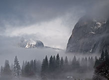 Foggy morning in yosemite Stock Photography