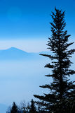 Foggy Mountain Bank Royalty Free Stock Image