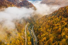 Foggy mountain highway in the middle of the forest on a cold autumn morning stock images
