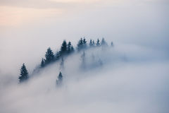 Foggy mountain landscape Stock Image
