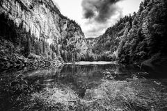 Black and white lake landscape with mountains. Cloudy and foggy view, abstract nature panorama. Foggy mountain landscape and deep mountain lake. Alps and pine Royalty Free Stock Images