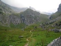 Foggy Mountain Landscape Stock Image