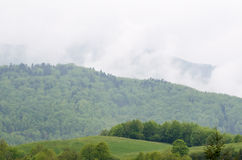Foggy Mountain Landscape after Rain Royalty Free Stock Images