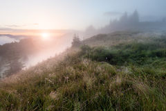 Foggy mountain morning Royalty Free Stock Photography