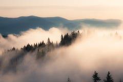 Foggy mountain morning Stock Photos
