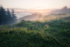 Foggy mountain morning Royalty Free Stock Images