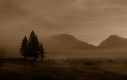 Foggy Mountain Morning in Sepia Royalty Free Stock Image