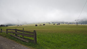 Foggy mountain pasture with hay huts Stock Image