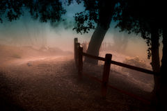 Foggy Mountain Path Royalty Free Stock Image