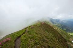 Foggy mountain path landscape Royalty Free Stock Photo