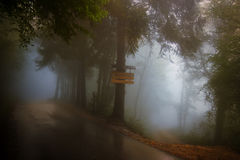 Foggy mountain road Royalty Free Stock Images