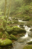 Foggy Mountain Stream. Roaring Forks Nature Trail,Great Smoky Mountains stock photography