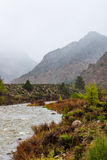 Foggy mountain stream. Nature landscape of mountain stream river during bad weather with fog covered mountains in the background Royalty Free Stock Photography