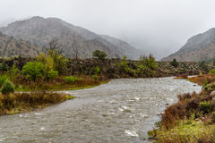 Foggy mountain stream. Nature landscape of mountain stream river during bad weather with fog covered mountains in the background Royalty Free Stock Photo