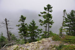 Foggy Mountain Top Royalty Free Stock Photography