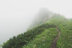 Foggy mountain trail Stock Photo