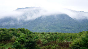 Foggy mountain. It was rainy day and typhoon was approaching to this area Royalty Free Stock Image